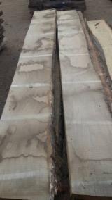 Unedged Hardwood Timber - KD oak lumbers AB