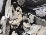 Дрова - Пеллети - Щепа - Пил - Відходи Для Продажу - Яблуня Деревне Вугілля Україна
