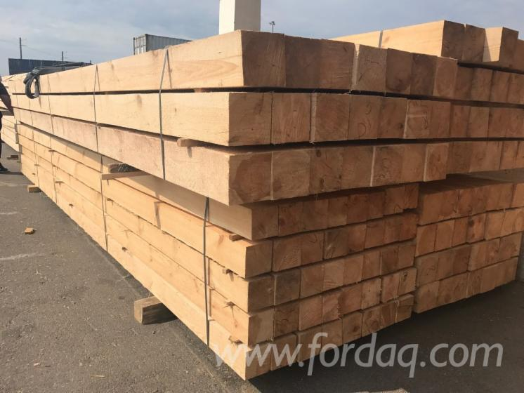 Fresh-Pine-Timber-148