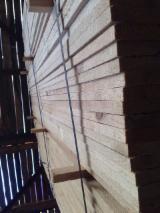 SD Pine Planks 23 mm