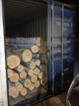 Birch  Hardwood Logs - Birch Veneer Logs 18+ cm