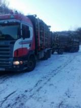 Camioane Transport Busteni Lungi - Vând Scania R, 2005, transport bușteni