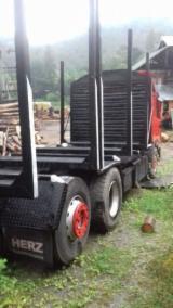 Camioane Transport Busteni Lungi - Camion MAN 3 transport busteni