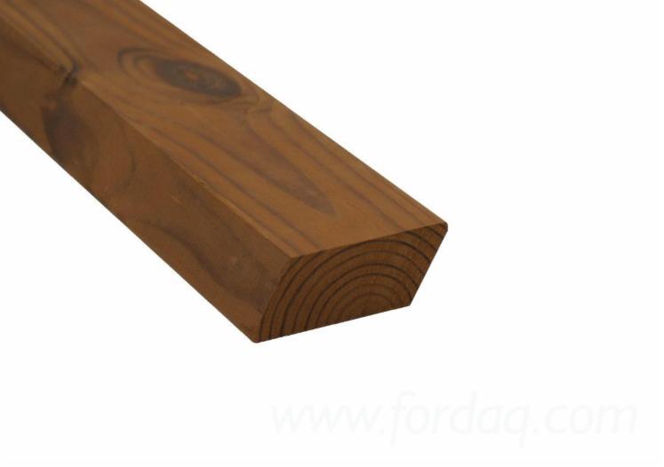 Massivholz--Sibirische-Kiefer
