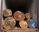 Hardwood  Logs - Tropical Hardwood