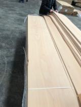刨切单板  - Fordaq 在线 市場 - 天然单板, 红橡木, 榉木, 向下指接