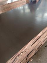 Find best timber supplies on Fordaq - Linyi Huabao Import and Export Co.,Ltd - 18 mm Poplar Film Faced Plywood for Construction