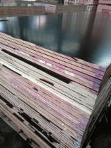Find best timber supplies on Fordaq - Linyi Huabao Import and Export Co.,Ltd - Poplar Shuttering Film Faced Plywood