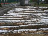 Industrial Logs - Beech / Oak / Brown Ash Industrial Logs 30+ cm