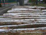 Kaufen Oder Verkaufen  Stämme Für Die Industrie, Faserholz Hartholz  - Stämme Für Die Industrie, Faserholz, Esche , Buche, Eiche