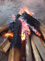 Energie- Und Feuerholz Brennholz Ungespalten - Eukalyptus Brennholz Ungespalten