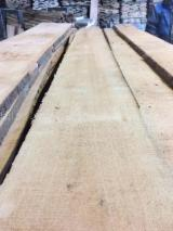 Find best timber supplies on Fordaq - Kingway GmbH - Beech Loose Lumber 22-60 mm A/AB