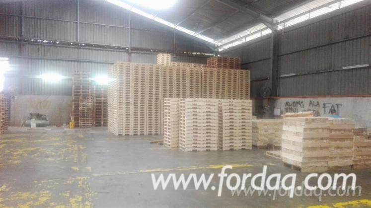 Fir / Pine / Spruce New Pallets