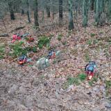 Arbeitsstellen - Berufspraktika - Forstwirt