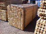 Softwood  Logs For Sale - AB Scots Pine Poles / Half-Palisades 6-20 cm