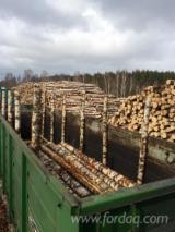 Birch  Hardwood Logs - Birch Veneer Logs 18 cm