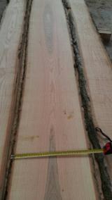 Lithuania - Fordaq Online market - KD Brown Ash Loose Boards 50 mm
