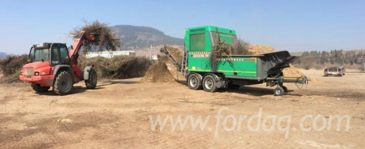 Wholesale Spruce Wood Chips From Used Wood from Romania