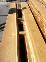 Softwood  Unedged Timber - Flitches - Boules Demands - Siberian Larch Boules, 25; 32; 50; 80 mm