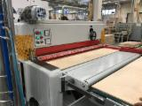 Panel Saws - Multiblades rip saw for Grooving and Cutting Panels BGD