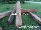 Kaufen Oder Verkaufen  4-seitig Sägegestreiftes Rundholz Hartholz  - 4-seitig Sägegestreiftes Rundholz, Kossoholz