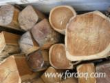Forest And Logs Asia - A/B Teak Logs 26+ cm