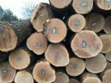 null - Schnittholzstämme, Linde, Walnuss , Roteiche