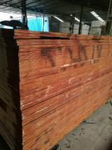 Plywood – Siyah Film Kaplı, Kavak