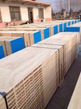 Panouri LVL - Vand LVL-lemn masiv laminat Pin Chinezesc  China