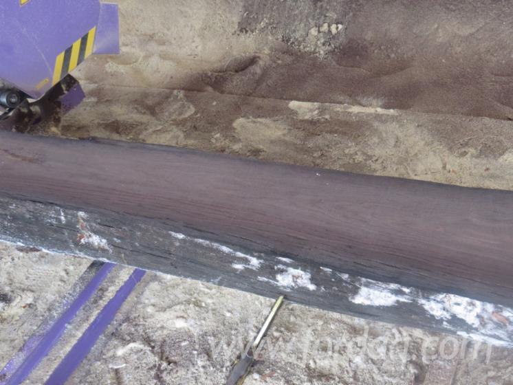 Bog Oak Square Logs 30 cm