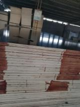 18 mm Poplar Film Faced Plywood