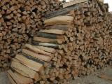Czech Republic - Fordaq Online market - Beech / Oak / Hornbeam Firewood Cleaved