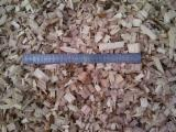 Firewood, Pellets And Residues - Eucalyptus Wood Chips in Bulk