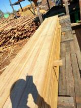 Offers Lithuania - Siberian Larch Boards 27-34 mm