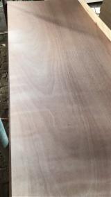 天然胶合板, 奥克橄榄木