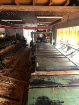 Austria Woodworking Machinery - EWD/ PAUL/ Mayerhofer Complete Sawmill Line