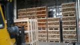 薪炭材-木材剩余物 薪碳材 开裂原木 - 劈好的薪柴-未劈的薪柴 薪碳材/开裂原木 桦木