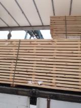 供应 白俄罗斯 - 红松, 云杉-白色木材