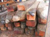 Hardwood Logs for sale. Wholesale Hardwood Logs exporters - looking for buyer of of timber logs , all spaces to contact us