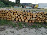 Forêts Et Grumes Europe - Vend Grumes De Trituration Pin  - Bois Rouge