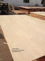 Plywood Panels  - Birch Commercial Plywood 6-21 mm