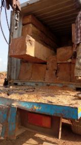 Africa Hardwood Logs - Doussie Semi Clean Square Logs 35*35 + cm