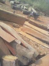 加纳 - Fordaq 在线 市場 - 方形木材, 非洲格木, FSC