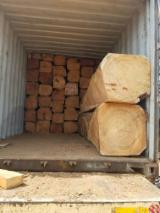 Africa Hardwood Logs - Quality graded square logs - Doussie, Okan, Tali