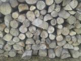 Energie- Und Feuerholz Brennholz Ungespalten - PEFC/FFC Buche Brennholz Ungespalten 10-30  cm
