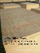 Pine Construction Marine Plywood, 15; 18 mm thick