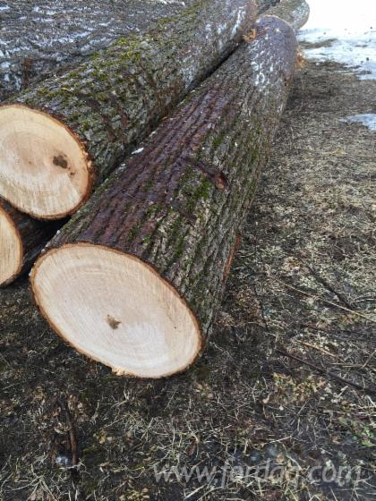 Basswood-logs-A-B