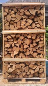 Israel - Fordaq Online market - KD Beech/ Oak/ Eucalyptus Firewood