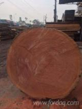 Forest And Logs Vietnam - Buying A/B Sapelli Saw Logs, diameter 40+ cm