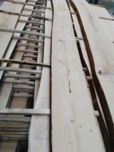 Czech Republic - Fordaq Online market - AD/ KD Loose Beech Timber